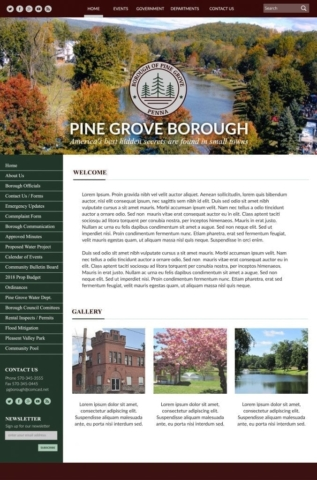town website design